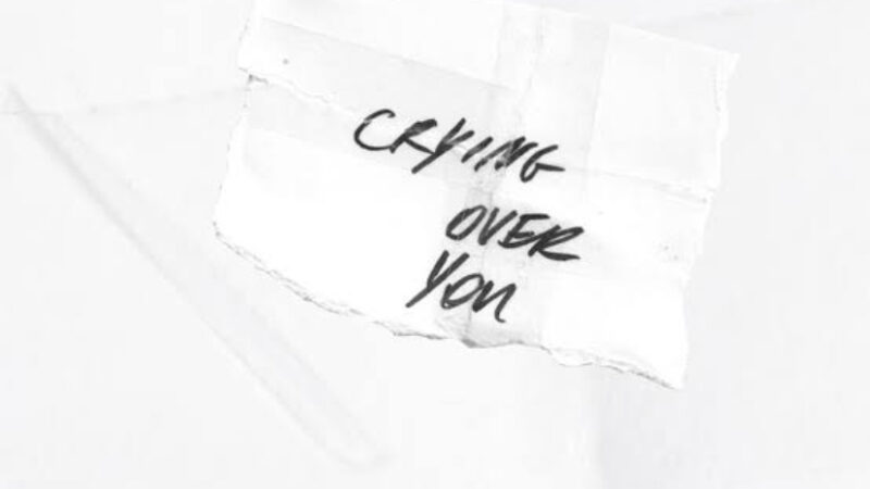 The Band CAMINO & Chelsea Cutler – Crying Over You